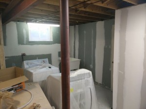 Oakville Basement Mold Board and Tape